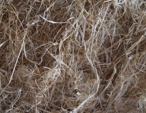 Decorticated Hemp Fiber