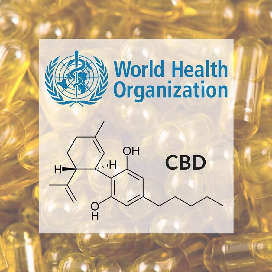 World Health Organization Stands for CBD