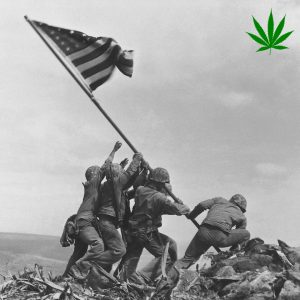 Hemp Regulation Created Camaraderie