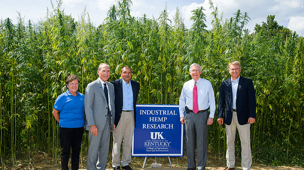 Kentucky Hemp Ready for Reform with Hemp Farming Act of 2018